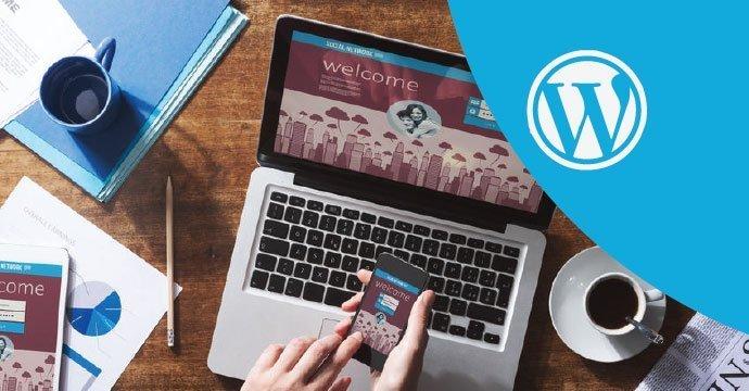 SITO-WEB-WP-PROFESSIONAL-KAUKY - Web Agency Pavia
