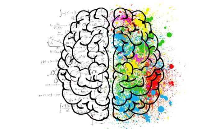 Cosa diventa Virale sui Social? C'è una parte del cervello che lo decide!