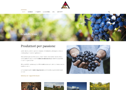 Realizzazione sito web aradelli vini